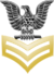 Petty Officer First Class Rank Insignia